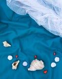 Σύνολο θαλασσινών κοχυλιών και πετρών, κάρτα, διάστημα αντιγράφων Στοκ εικόνα με δικαίωμα ελεύθερης χρήσης