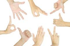 Σύνολο θηλυκού χεριού Στοκ φωτογραφίες με δικαίωμα ελεύθερης χρήσης