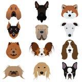Σύνολο διανυσμάτων και εικονιδίων σκυλιών Στοκ Εικόνα