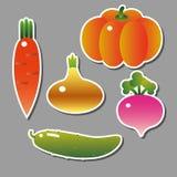 Σύνολο διανυσματικών λαχανικών Στοκ Εικόνες