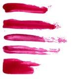 Σύνολο διανυσματικών κόκκινων λεκέδων χρωμάτων Συλλογή Στοκ Φωτογραφία