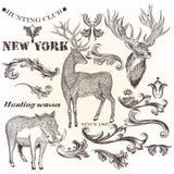 Σύνολο διανυσματικών συρμένων χέρι ζώων και floral στροβίλων για το σχέδιο Στοκ Φωτογραφία