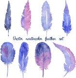 Σύνολο διανυσματικών συρμένων χέρι φτερών watercolor Στοκ φωτογραφία με δικαίωμα ελεύθερης χρήσης