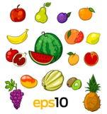 Σύνολο διανυσματικών φρούτων σκίτσων Στοκ Φωτογραφία