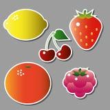 Σύνολο διανυσματικών φρούτων Στοκ φωτογραφία με δικαίωμα ελεύθερης χρήσης