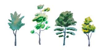 Σύνολο διαφορετικών δέντρων που χρωματίζονται από το watercolor Στοκ φωτογραφίες με δικαίωμα ελεύθερης χρήσης