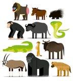 Σύνολο διαφορετικών αφρικανικών ζώων που απομονώνεται Στοκ εικόνα με δικαίωμα ελεύθερης χρήσης