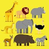Σύνολο διαφορετικών αφρικανικών ζώων που απομονώνεται Στοκ φωτογραφίες με δικαίωμα ελεύθερης χρήσης