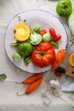 Σύνολο διαφορετικών φρέσκων ακατέργαστων ζωηρόχρωμων λαχανικών στο κεραμικό πιάτο Στοκ Εικόνες