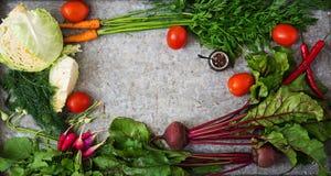 Σύνολο διαφορετικών φρέσκων λαχανικών Κατάλληλη διατροφή Στοκ εικόνα με δικαίωμα ελεύθερης χρήσης