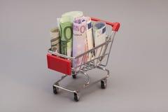 Σύνολο κάρρων αγορών των ευρο- τραπεζογραμματίων Στοκ φωτογραφία με δικαίωμα ελεύθερης χρήσης