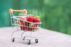 Σύνολο κάρρων αγορών των ώριμων κόκκινων φραουλών Θερινή συγκομιδή στο υπόβαθρο πρασινάδων, ρηχός τομέας βάθους, εκλεκτική εστίασ Στοκ Εικόνες