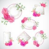 Σύνολο κάρτας λουλουδιών με την κενή εκλεκτής ποιότητας ετικέττα Στοκ εικόνα με δικαίωμα ελεύθερης χρήσης