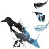 Σύνολο - κίσσα πουλιών watercolor, hand-drawn σκίτσο της τεχνικής Στοκ Εικόνα