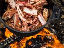 Σύνολο καζανιών του κρέατος αρνιών Στοκ εικόνες με δικαίωμα ελεύθερης χρήσης