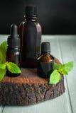 Σύνολο καφετιών μπουκαλιών, κλαδάκια της φρέσκιας μέντας σε ένα παλαιό ξύλινο υπόβαθρο aromatherapy ουσιαστικό πετρέλαι&omicro Στοκ Εικόνες