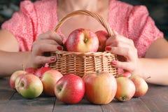 Σύνολο καλαθιών εκμετάλλευσης γυναικών των μήλων Στοκ εικόνες με δικαίωμα ελεύθερης χρήσης