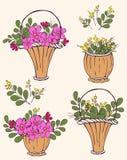 Σύνολο καλαθιών των λουλουδιών Ελεύθερη απεικόνιση δικαιώματος