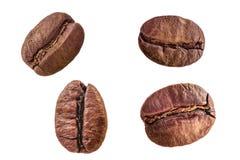 Σύνολο κινηματογράφησης σε πρώτο πλάνο τεσσάρων ψημένης arabica φασολιών καφέ που απομονώνεται στο άσπρο υπόβαθρο Στοκ φωτογραφίες με δικαίωμα ελεύθερης χρήσης