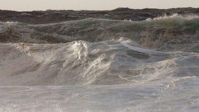 Σύνολο κυματωγών θύελλας σωληνώσεων τεράτων Στοκ εικόνες με δικαίωμα ελεύθερης χρήσης