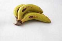 Σύνολο μπανανών Στοκ Φωτογραφία