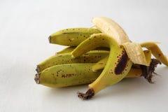 Σύνολο μπανανών Στοκ φωτογραφίες με δικαίωμα ελεύθερης χρήσης