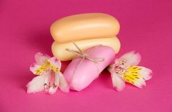 Σύνολο νέου σαπουνιού κομματιών και του λουλουδιού Στοκ Εικόνες