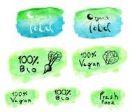 Σύνολο λογότυπου watercolor vegan Στοκ Εικόνες