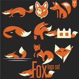 Σύνολο 1 λογότυπων αλεπούδων Στοκ Εικόνες