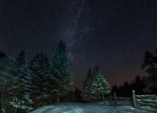 Σύνολο ουρανού των αστεριών στο δάσος χειμερινών βουνών Στοκ Εικόνα