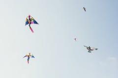 Σύνολο ουρανού των ζωηρόχρωμων πετώντας ικτίνων Στοκ εικόνες με δικαίωμα ελεύθερης χρήσης