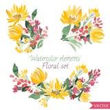 Σύνολο λουλουδιών και φύλλου watercolor Διανυσματική συλλογή με τα φύλλα και τα λουλούδια, σχέδιο χεριών Στοκ Φωτογραφία