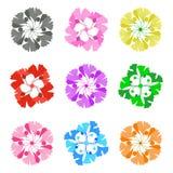 Σύνολο λουλουδιών στο λευκό Στοκ Φωτογραφίες
