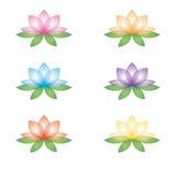 Σύνολο λουλουδιών λωτού σε ένα άσπρο υπόβαθρο διανυσματική απεικόνιση