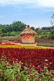 Σύνολο παγκόσμιων κήπων λουλουδιών Banan Chongqing των λουλουδιών στην πλήρη άνθιση Στοκ Εικόνες