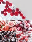 Σύνολο παγωμένων μούρων Δασικό το βακκίνιο στο κομμάτι του πάγου, παγωμένα κόκκινα βακκίνια σταφίδων σμέουρων φραουλών Μακροεντολ Στοκ Εικόνες