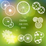 Σύνολο περιλήψεων Τοπ άποψη δέντρων για το σχέδιο τοπίων Στοκ Φωτογραφίες