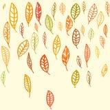 Σύνολο πεσμένων φύλλων Σχέδιο φθινοπώρου Σκιαγραφημένα φύλλα διανυσματική απεικόνιση