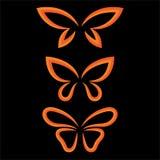Σύνολο πεταλούδων φτερών διανυσματική απεικόνιση