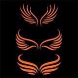 Σύνολο πουλιών φτερών Στοκ εικόνες με δικαίωμα ελεύθερης χρήσης