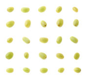Σύνολο πολλαπλάσιων ενιαίων άσπρων σταφυλιών Στοκ φωτογραφίες με δικαίωμα ελεύθερης χρήσης