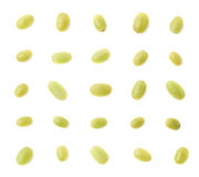 Σύνολο πολλαπλάσιων ενιαίων άσπρων σταφυλιών Στοκ Εικόνες