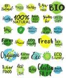 Σύνολο πράσινου λογότυπου watercolor Στοκ Εικόνες