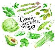 Σύνολο πράσινων λαχανικών Στοκ Εικόνες