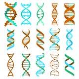 Σύνολο σημαδιών μορίων DNA, γενετικά στοιχεία και σκέλος συλλογής εικονιδίων διάνυσμα διανυσματική απεικόνιση