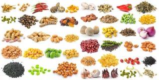 Σύνολο σιταριών και χορταριών στο άσπρο υπόβαθρο Στοκ φωτογραφία με δικαίωμα ελεύθερης χρήσης