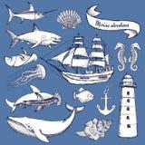 Σύνολο σκίτσων θαλασσίων στοιχείων απεικόνιση αποθεμάτων