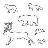 Σύνολο σκιαγραφιών των άγριων ζώων Στοκ Εικόνα