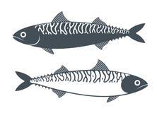 Σύνολο σκουμπριών Σκουμπρί στο άσπρο υπόβαθρο απεικόνιση αποθεμάτων