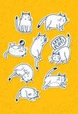 Σύνολο συρμένων χέρι γατών Αστεία διανυσματική έννοια σκίτσων της Pet Στοκ Εικόνες